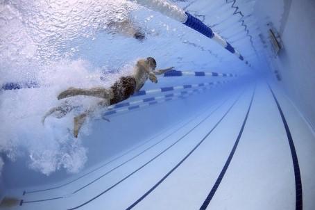 水泳をしている人