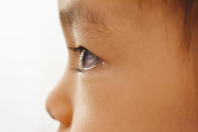 子どもの才能は環境が決める?音で聞く英語学習とは?
