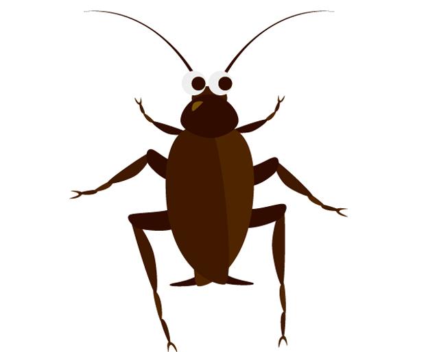 ゴキブリホイホイってネズミも捕まえられるの?